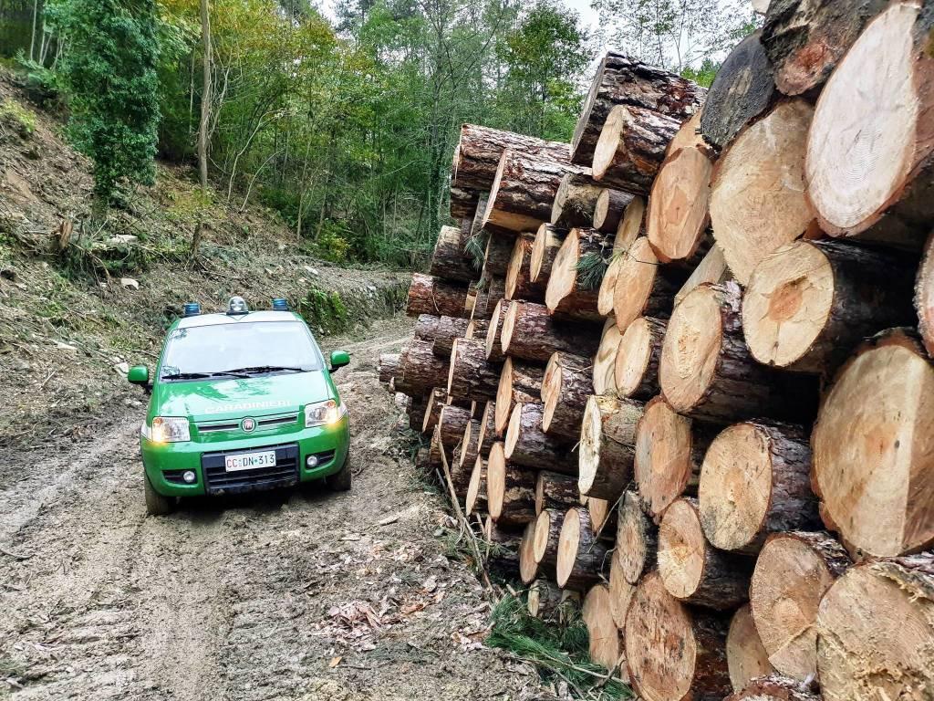 carabinieri forestali boschi