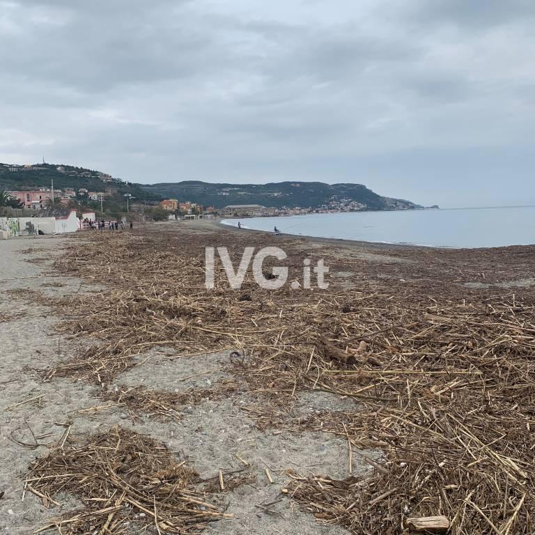 I bambini puliscono la spiaggia