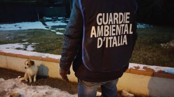 Guardie Ambientali d'Italia Savonese