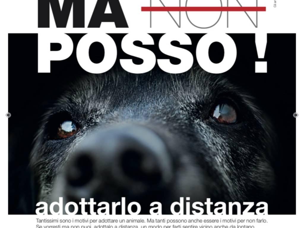 Enpa, adozioni a distanza, cane