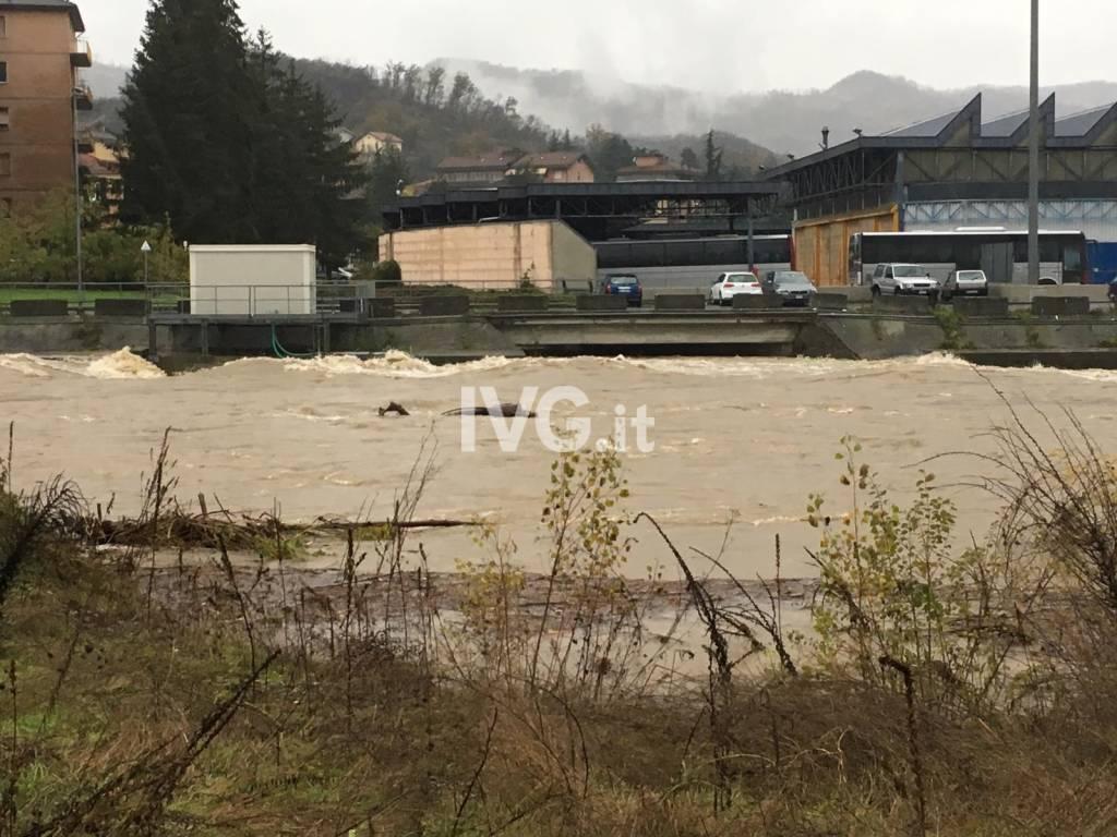 Furia incontenibile: il fiume Bormida esonda a Dego