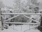 Neve Alpicella di Torriglia