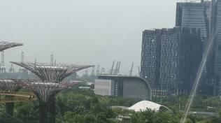 spediporto singapore