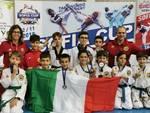 Taekwondo,