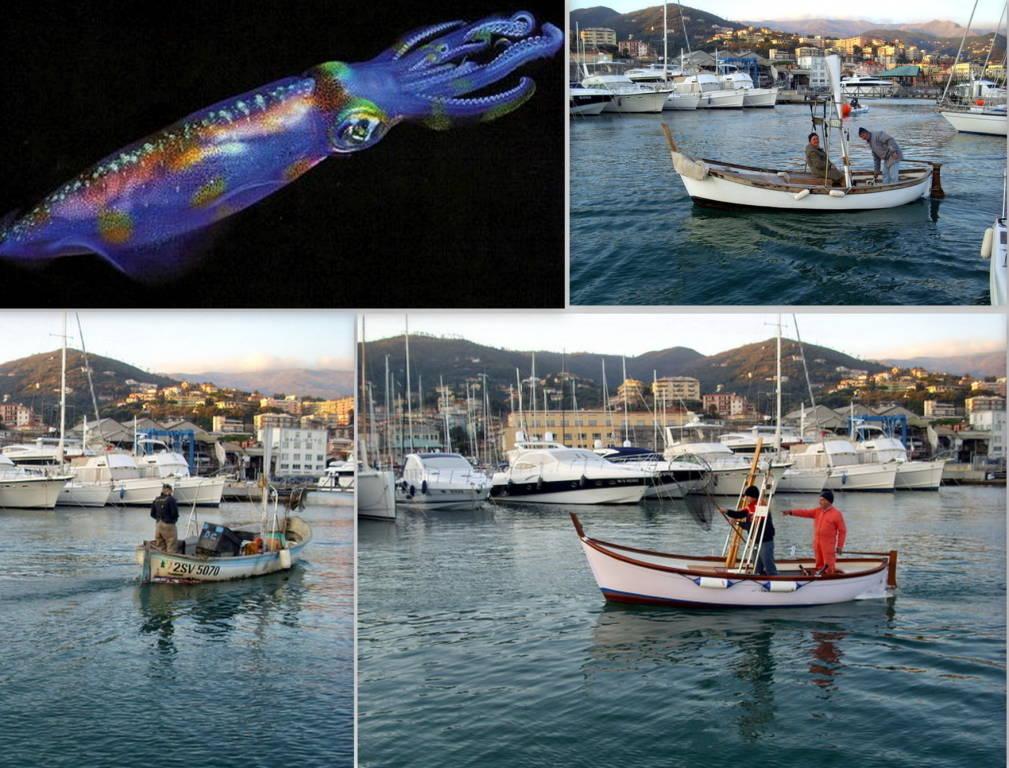 Raduno di Pesca calamaro e cefalopodi Varazze