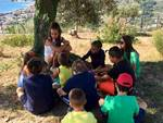 Ad Asinolla il Winter Camp per bambini e ragazzi