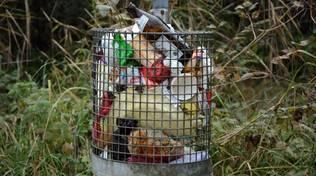Cestino spazzatura generica