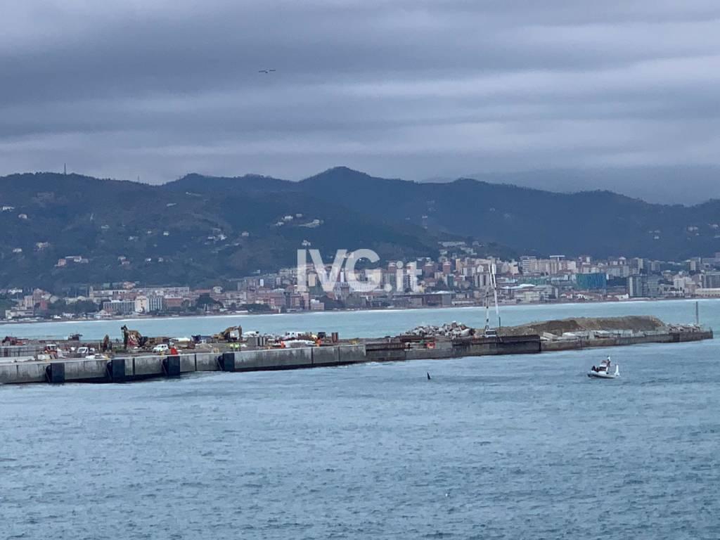 Dal genovese al savonese, le orche si trovano a Vado Ligure