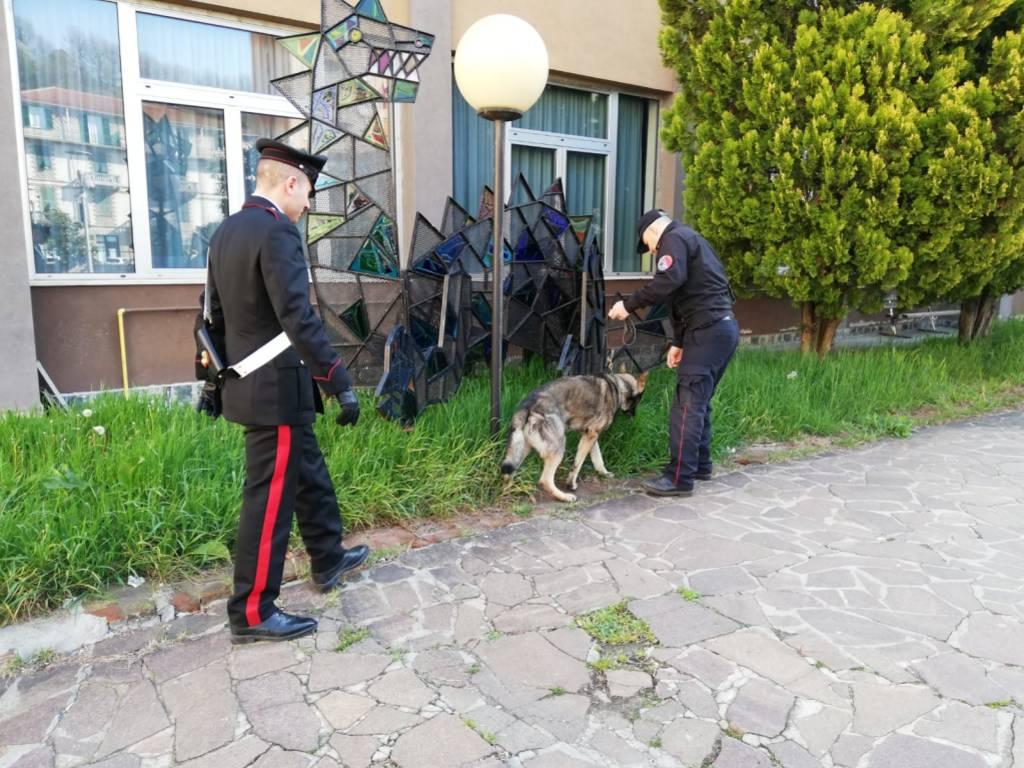 Controlli Cani Scuole Carcare