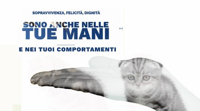 Giornata mondiale diritti animali