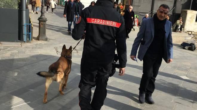 Alassio, carabinieri con i cani nel budello