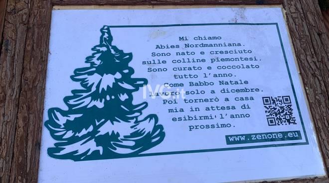 Albero di Natale Savona