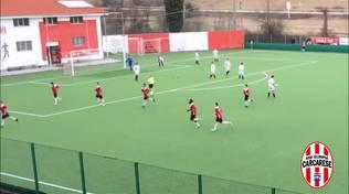 calcioc