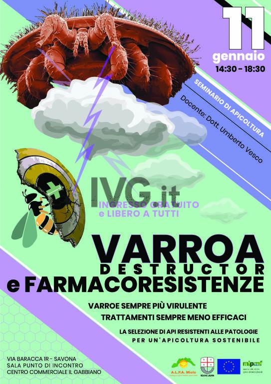 Varroa Destructor e Farmacoresistenze