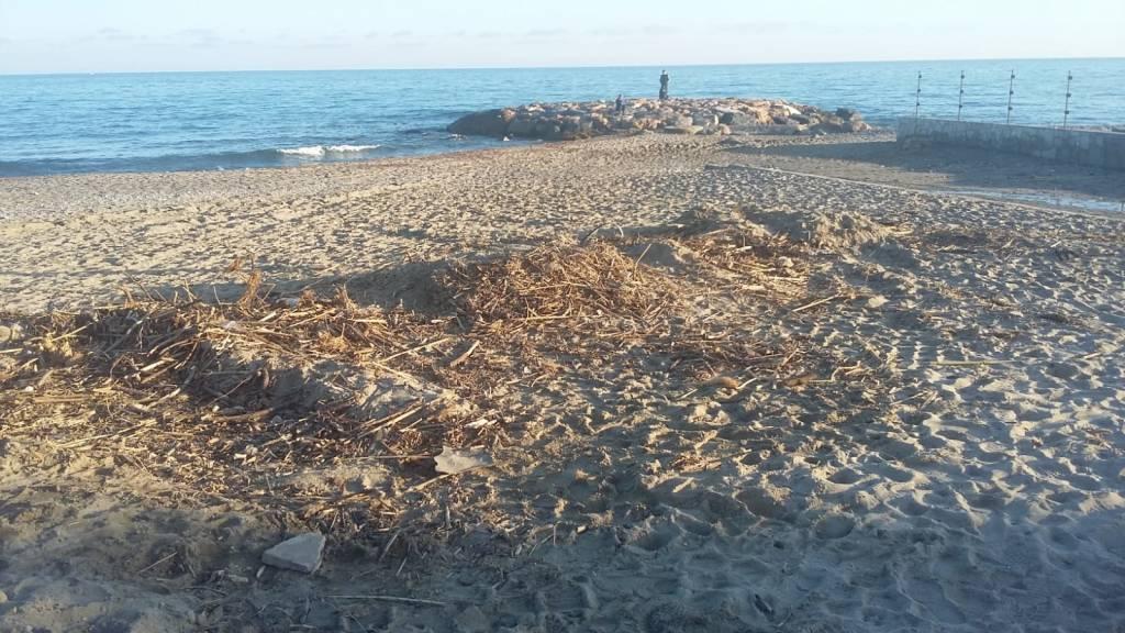 Sporcizia Spiagge Ceriale