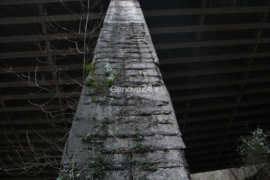 Viadotto Campodonico 2