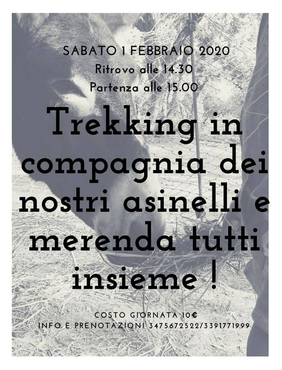 Trekking asini Asinolla Pietra Ligure