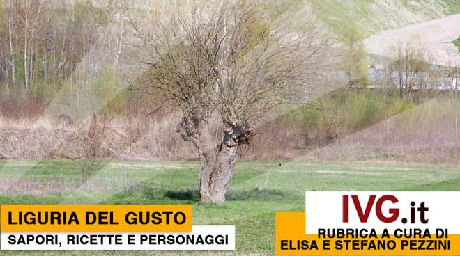 Liguria Gusto 28 febbraio