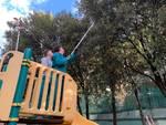 Giardini Falco pulizia