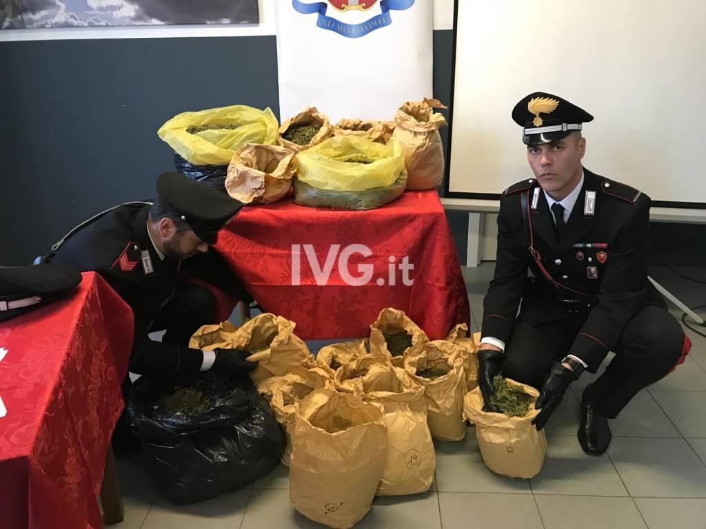 """L'operazione """"Green Country"""" dei carabinieri"""