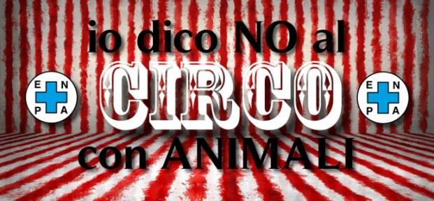 no circo Enpa