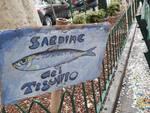 Sardine, Santori a Genova incontra la piazza di Certosa