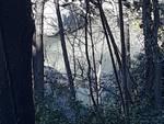 sversamento torrente verde