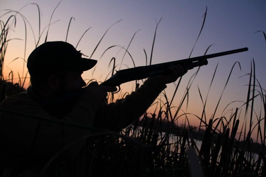 caccia generica