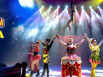 Circo millennium savona