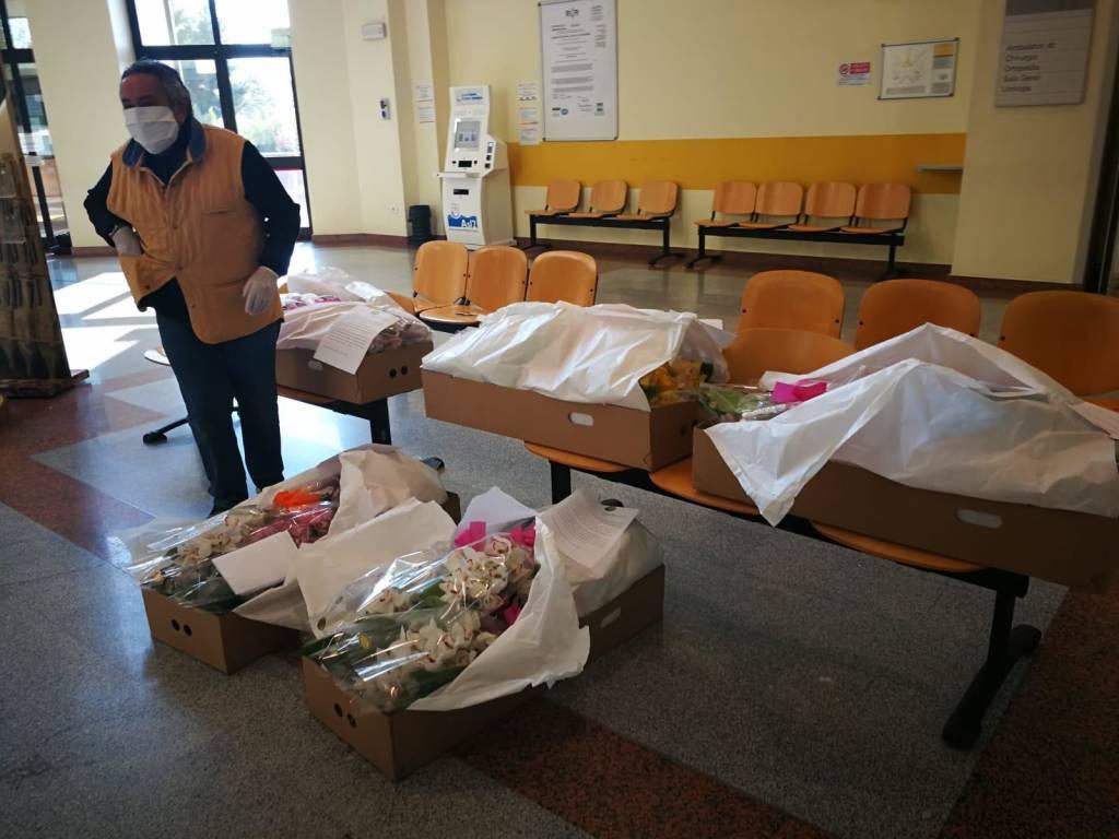 Orchidee Ospedale Albenga