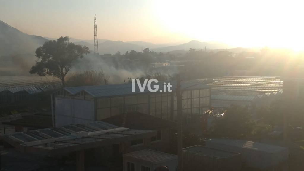 Incendio in regione Rapalline ad Albenga