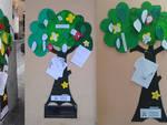 alberi socialità