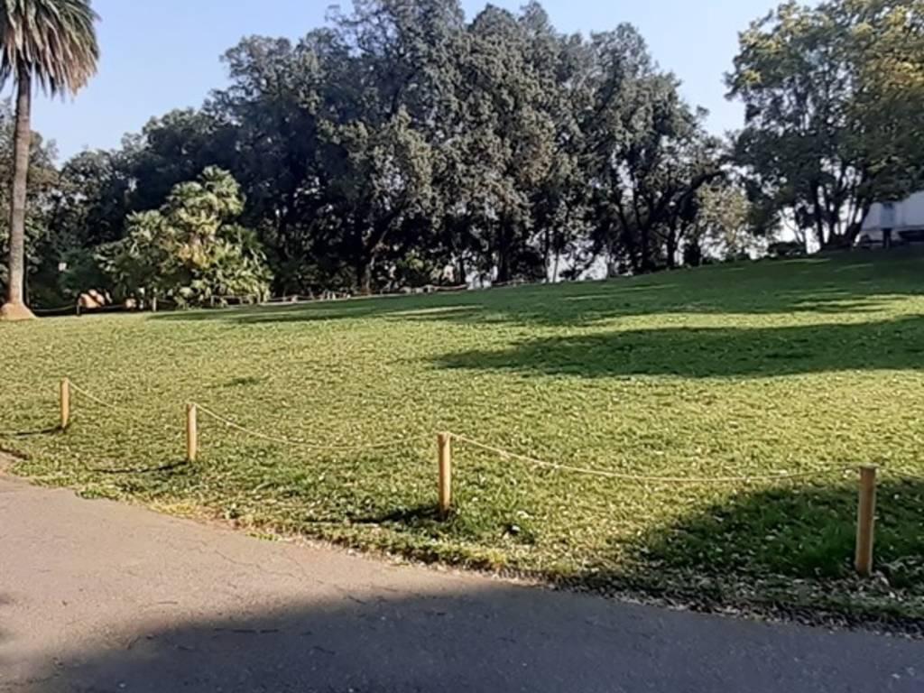 aster verde pubblico parchi di nervi