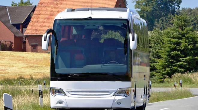 bus trasporto privato