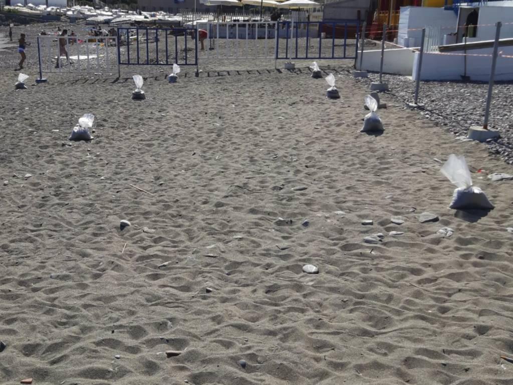 Segnaposti spiagge