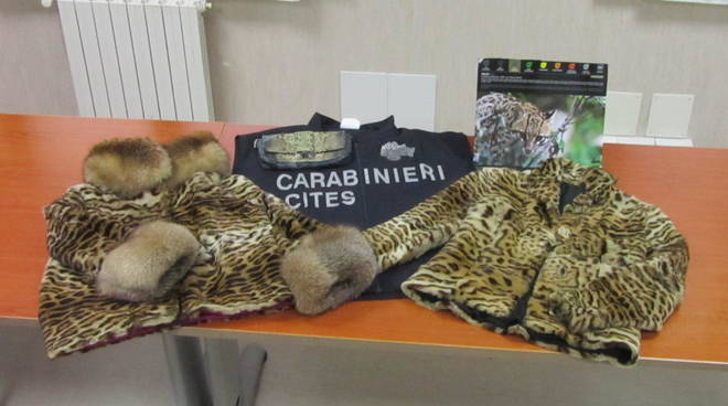 giacca di leopardo