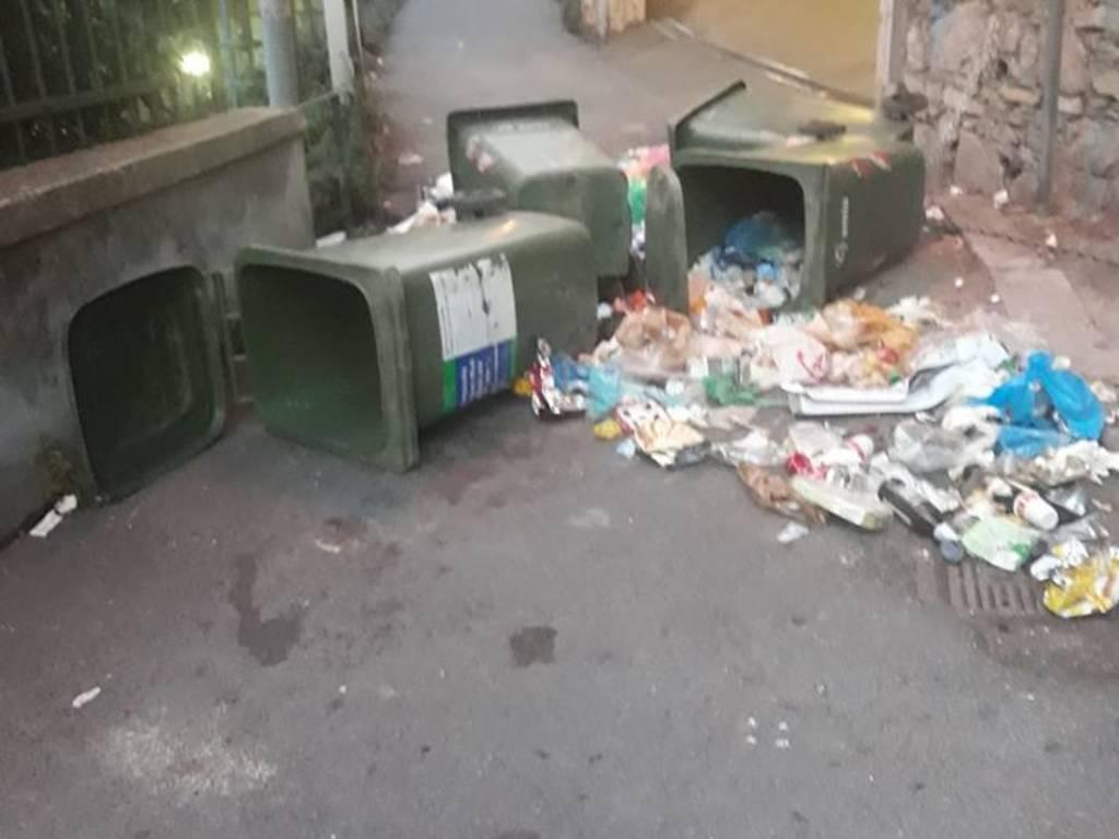 spazzatura e rifiuti cinghiali via rovare