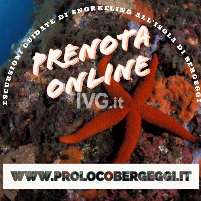 Escursioni Guidate di Snorkeling all\'Isola di Bergeggi
