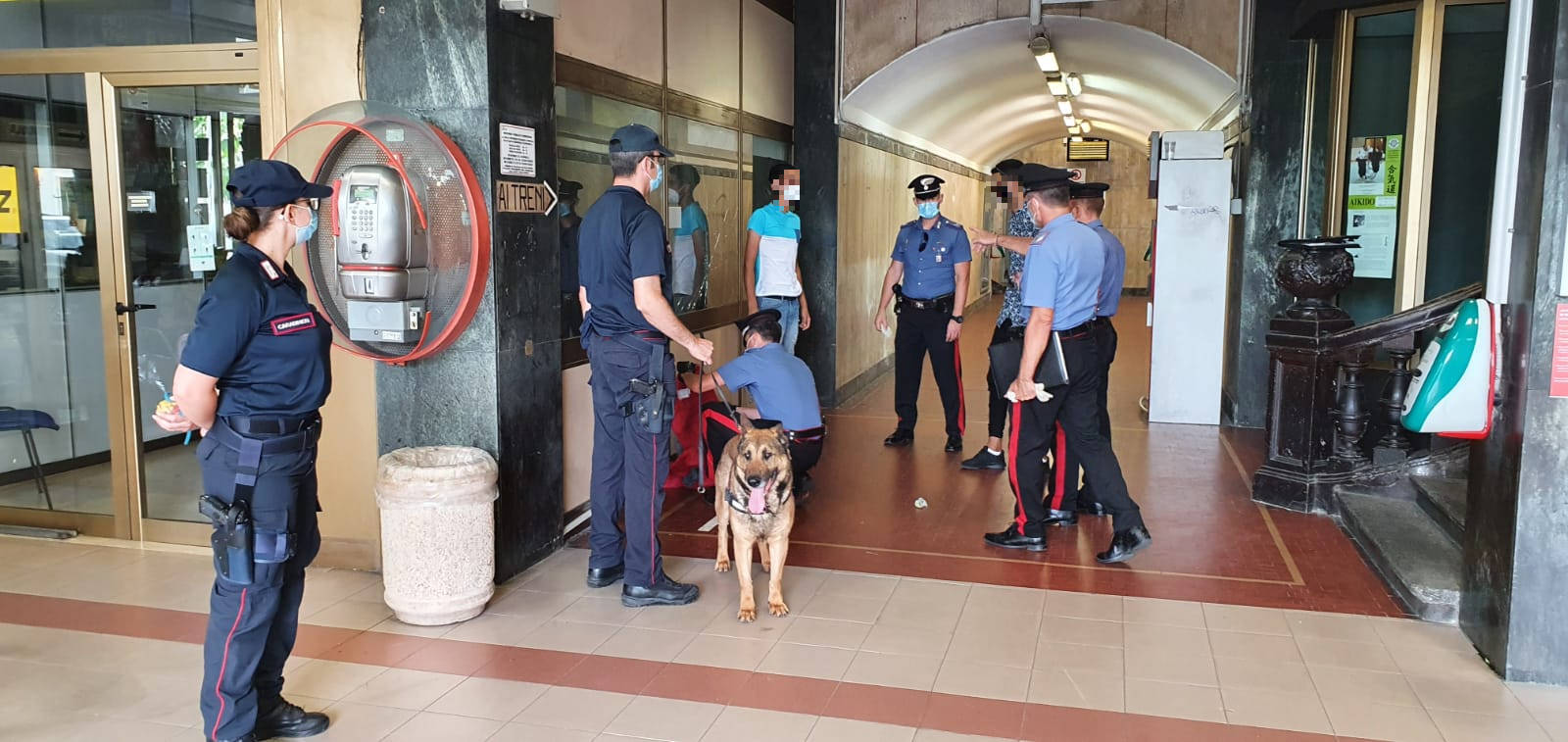 Controlli Carabinieri Stazione Alassio Cane