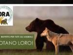 Ora rispetto tutti animali regionali