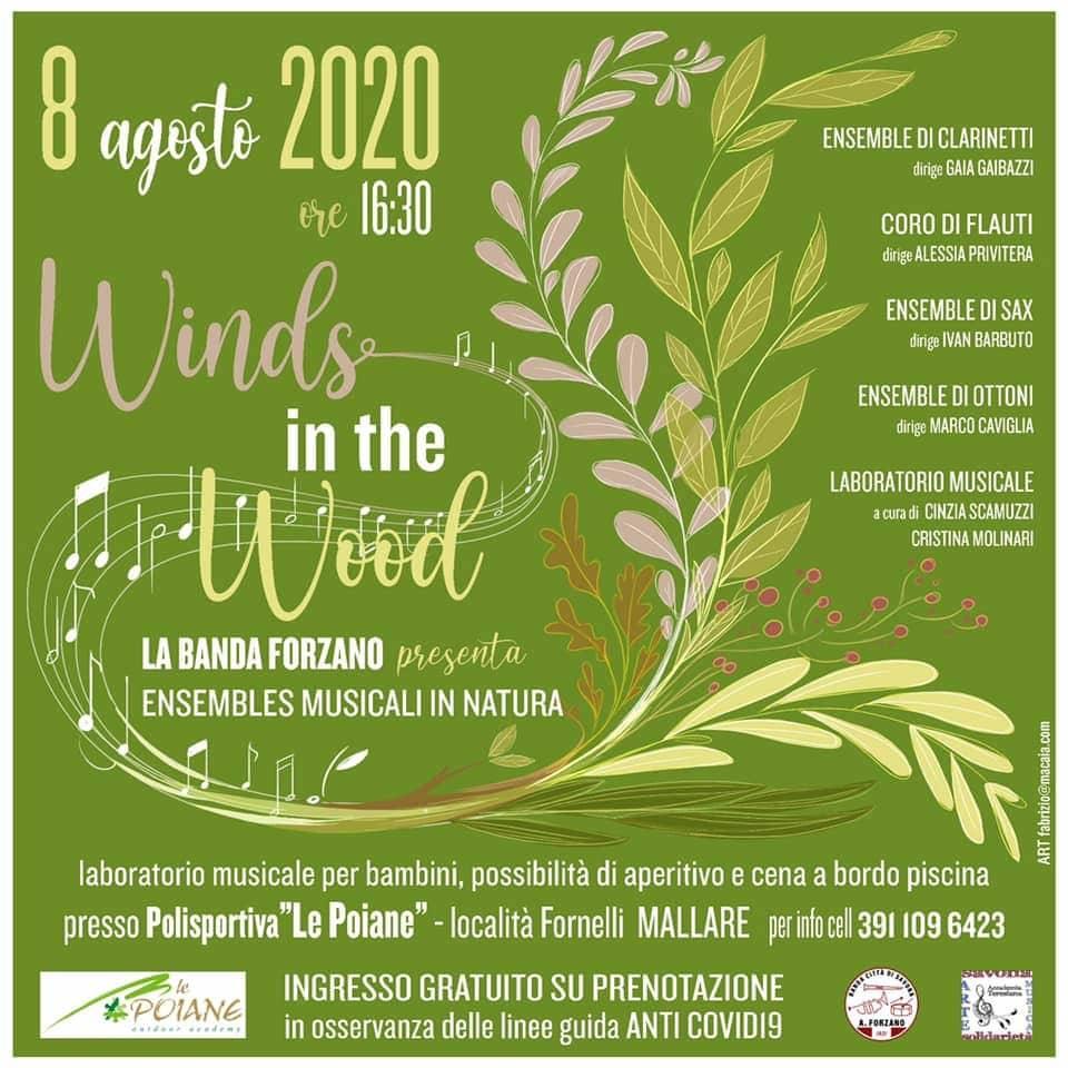 """Banda Forzano """"Winds in the Wood"""" concerto Pallare Mallare"""