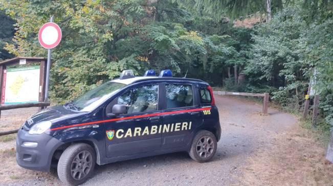 Carabinieri forestali generica