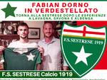 Fabian Dorno