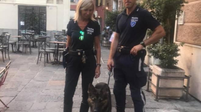 Albenga polizia locale