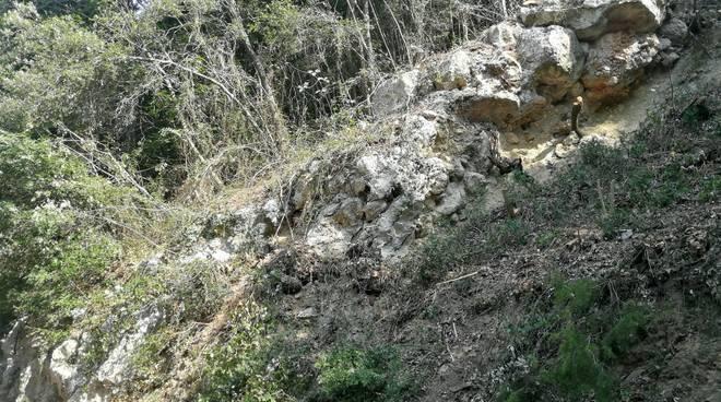 Orco Felino frana strada provinciale 27 bis