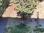Savona degrado giardini via Leopardi Santa Rita