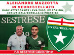 Alehandro Mazzotta