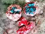 bocconi avvelenati Segno