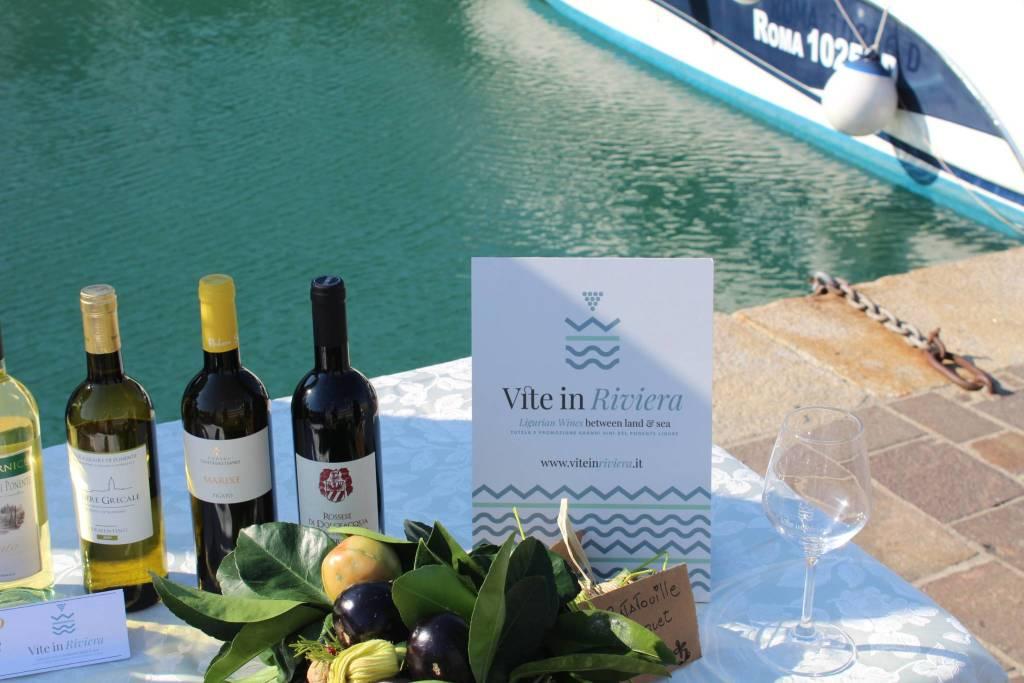 Marina di Alassio wine experience