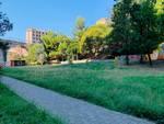giardini di plastica giardini baltimora